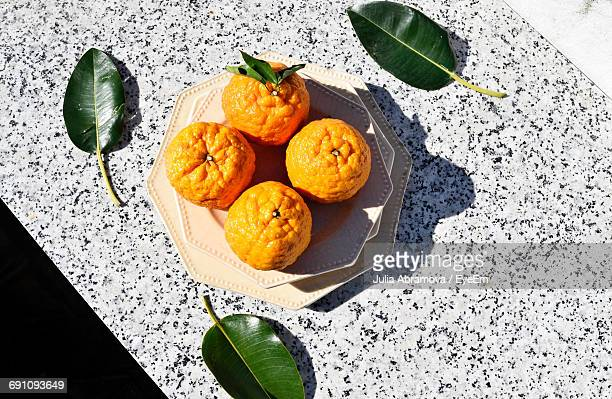 High Angle View Of Oranges In Plate With Leaves On Retaining Wall