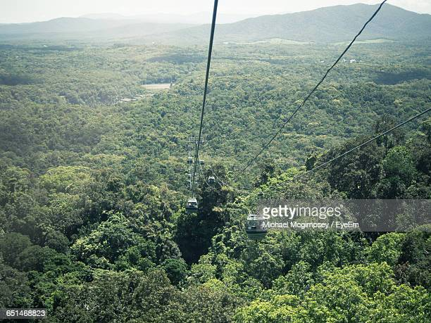 high angle view of overhead cable cars over forest - クランダ ストックフォトと画像