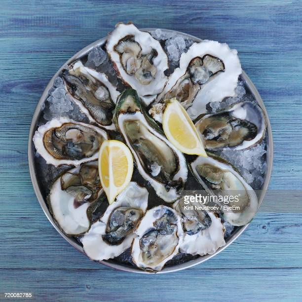 high angle view of oysters in plate on table - 魚介類 ストックフォトと画像