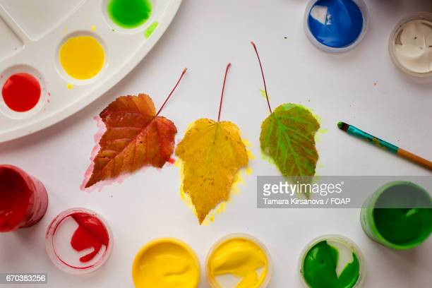 High angle view of painting autumn leaf