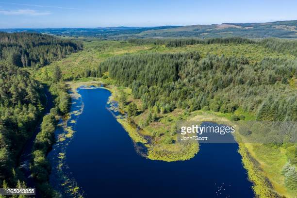 high angle view of part of a small scottish loch in rural dumfries and galloway, south west scotland - woodland stock pictures, royalty-free photos & images