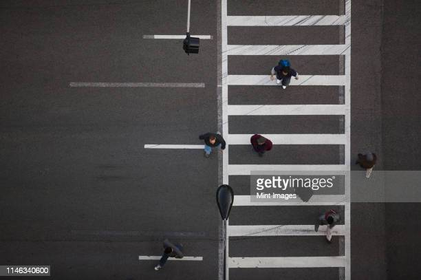 high angle view of pedestrians crossing street - crossing stock pictures, royalty-free photos & images