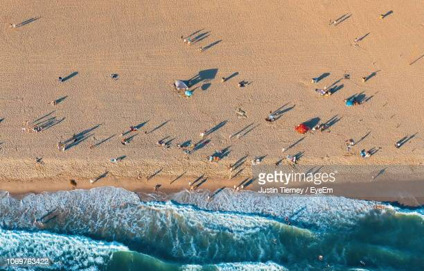 high angle view of people at beach - santa monica stock-fotos und bilder