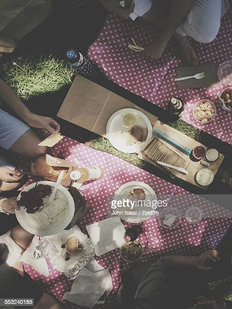 High Angle View Of People Having Snacks At Picnic