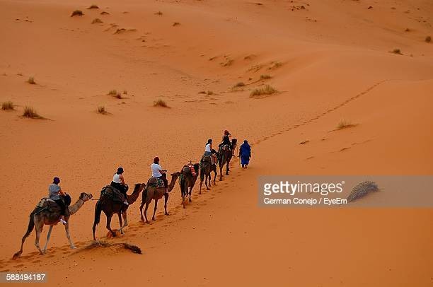 High Angle View Of People Riding On Dromedary Camel In Erg Chebbi