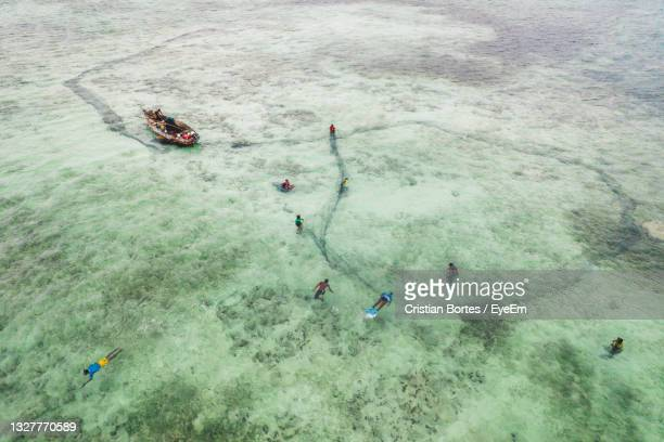 high angle view of people swimming in sea - bortes stock pictures, royalty-free photos & images
