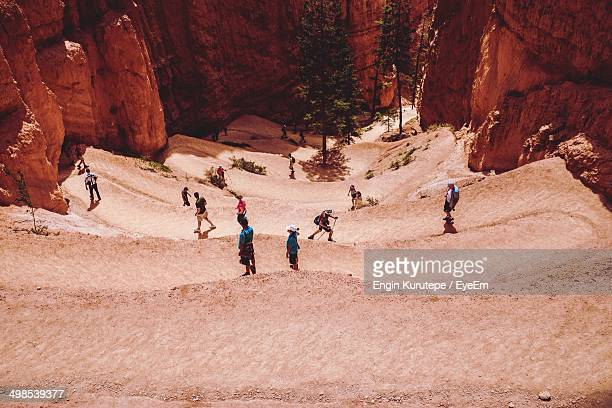 High angle view of people walking at Bryce canyon