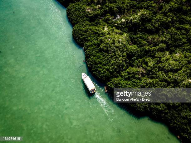 high angle view of person by sea - ferry stock pictures, royalty-free photos & images