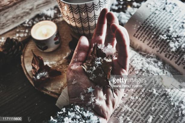 high angle view of person hand holding dry leaf and snow on table - province of caltanissetta stock photos and pictures