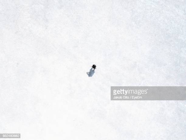 High Angle View Of Person On Snow Covered Field