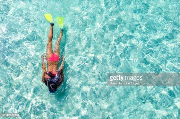 High Angle View Of Person Swimming In Ocean