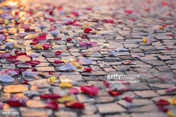 High Angle View Of Petals On Street