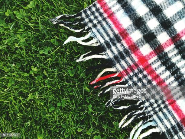 high angle view of picnic blanket on grass - picnic blanket stock pictures, royalty-free photos & images