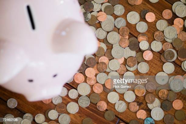 High angle view of piggy bank surrounded by coins