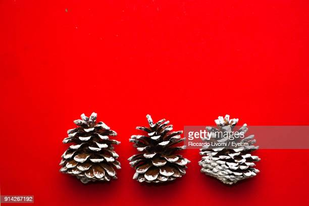 high angle view of pine cone against red background - pinecone stock pictures, royalty-free photos & images