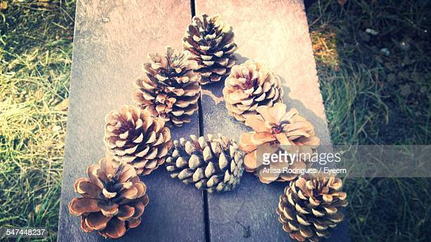 High Angle View Of Pine Cones On Wood