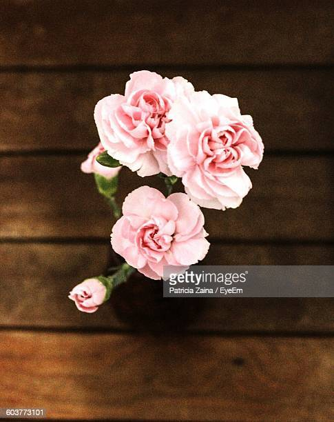 High Angle View Of Pink Carnation In Vase On Table
