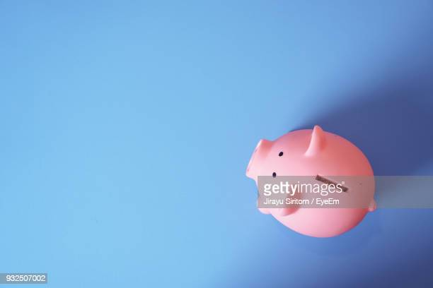 high angle view of pink piggy bank on blue background - savings stock pictures, royalty-free photos & images