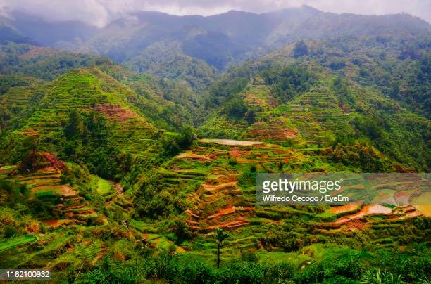 high angle view of plants and mountains - philippines stock pictures, royalty-free photos & images