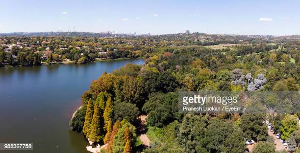 high angle view of plants by lake against sky - gauteng province stock pictures, royalty-free photos & images