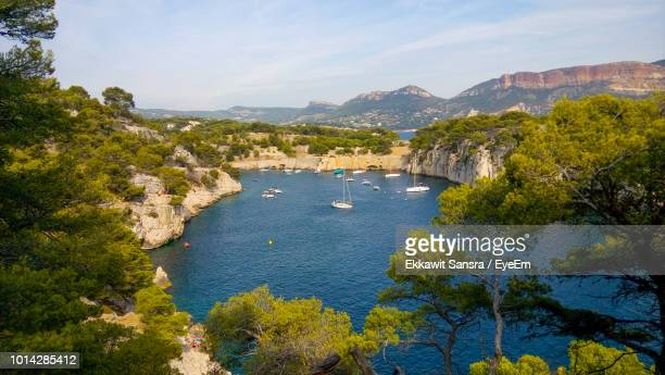 high angle view of plants by sea against sky - bouches du rhone stock pictures, royalty-free photos & images