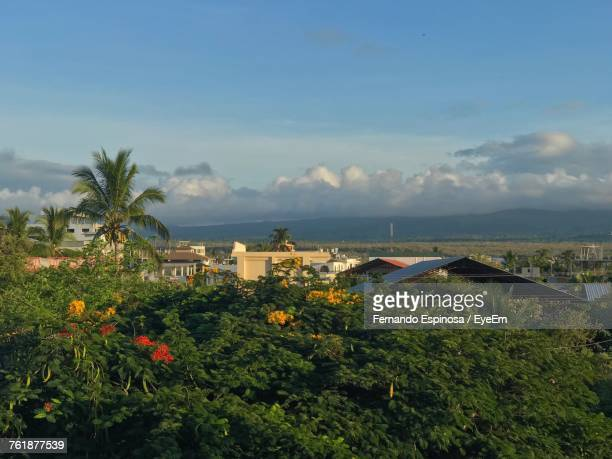 high angle view of plants by sea against sky - puerto ayora stock pictures, royalty-free photos & images