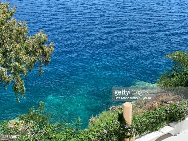 high angle view of plants by sea - isole eolie foto e immagini stock