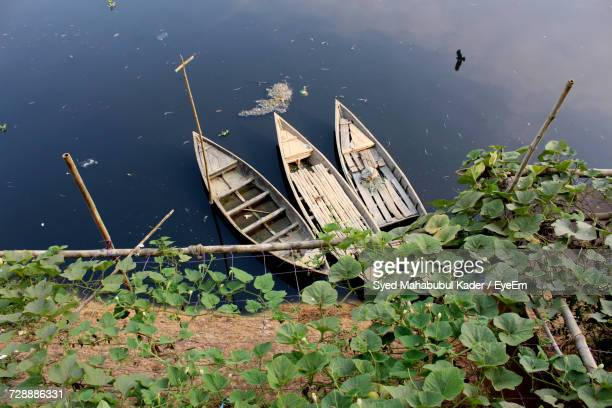 high angle view of plants floating on water - bangladesh village stock photos and pictures