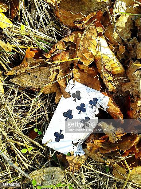 High Angle View Of Playing Card On Field