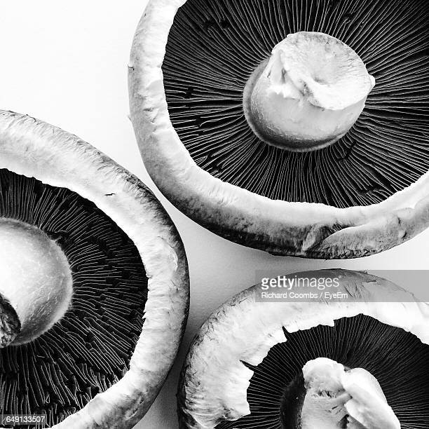 high angle view of portobello mushrooms on table - black and white vegetables stock photos and pictures