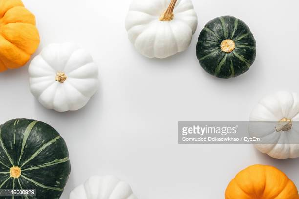 high angle view of pumpkins against white background - pumpkin stock pictures, royalty-free photos & images