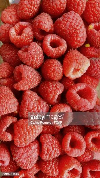 High angle view of raspberries