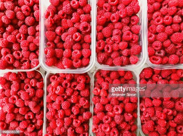 High angle view of raspberry in containers on a market stall at farmer's market