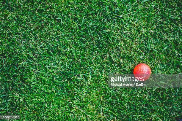 high angle view of red golf ball on grassy field - miniature golf stock photos and pictures