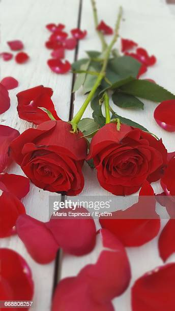 High Angle View Of Red Roses With Petals On Table