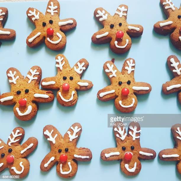 High angle view of reindeer gingerbread cookie
