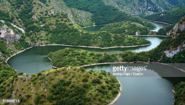 high angle view of river amidst trees in forest - serbien stock-fotos und bilder