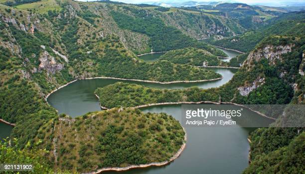 high angle view of river amidst trees in forest - serbia stock photos and pictures