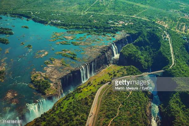 high angle view of river amidst trees - zimbabwe stock pictures, royalty-free photos & images