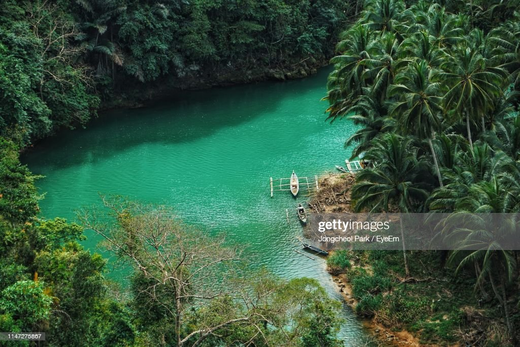 High Angle View Of River In Forest : Stock Photo