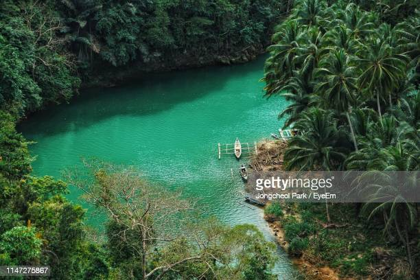 high angle view of river in forest - davao city stock photos and pictures
