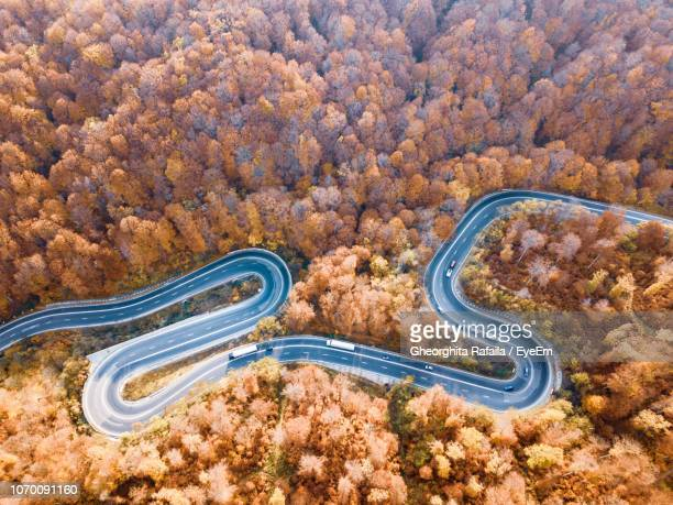 high angle view of road amidst plants in forest - transylvania stock pictures, royalty-free photos & images