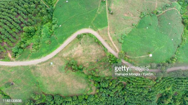 high angle view of road amidst trees - southeast asia stock pictures, royalty-free photos & images