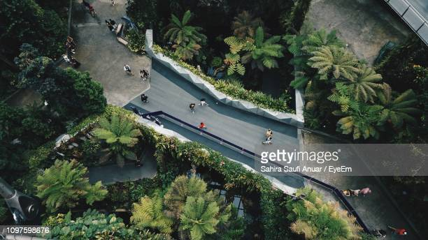 high angle view of road by trees in city - republik singapur stock-fotos und bilder