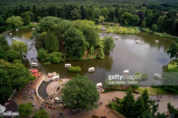 high angle view of road by trees - tilburg stock pictures, royalty-free photos & images