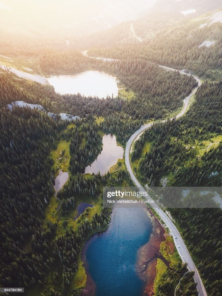 High Angle View Of Road Passing Through Trees : Stock Photo
