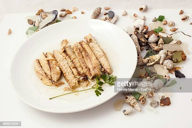 high angle view of roasted mackerel in plate against seashells - mackerel stock pictures, royalty-free photos & images