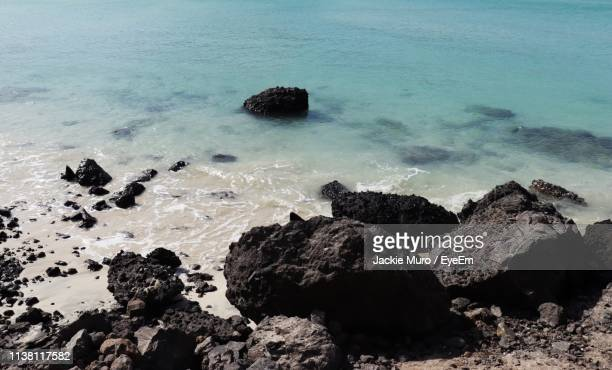 high angle view of rocks on beach - muro stock photos and pictures