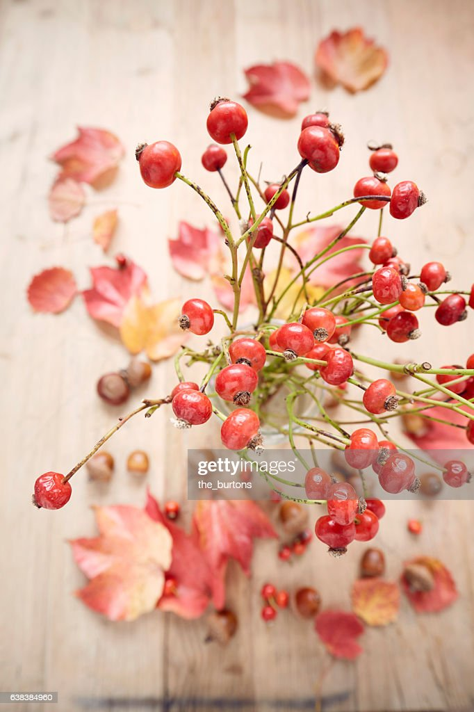 High angle view of rose hips in vase on wooden table : Stock-Foto