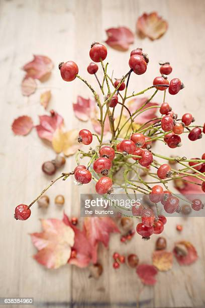 High angle view of rose hips in vase on wooden table